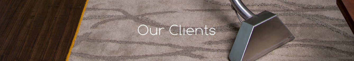 Carpet Cleaning Service in Asheville
