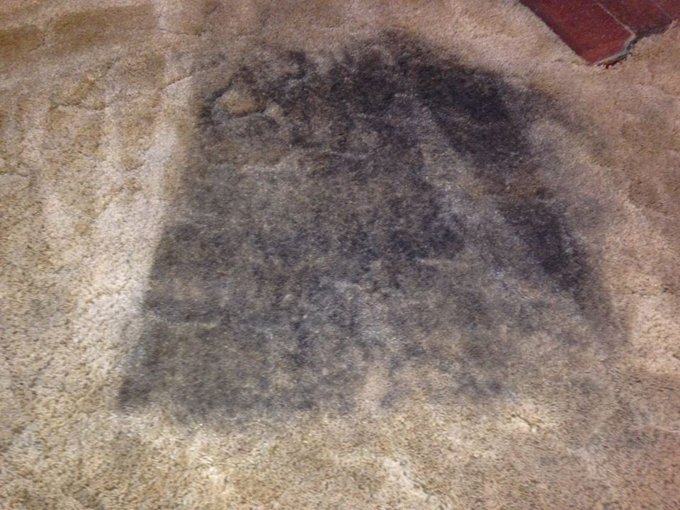 Black Spots On Carpet After Cleaning Carpet Vidalondon