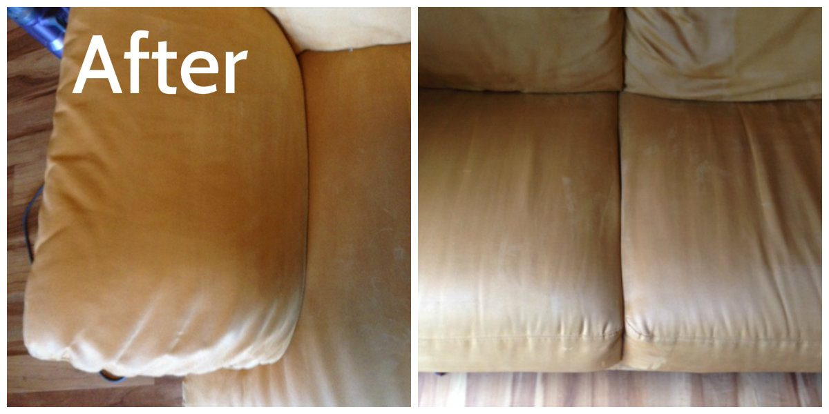 Asheville Upholstery Cleaning Before And After Five Step Carpet Care