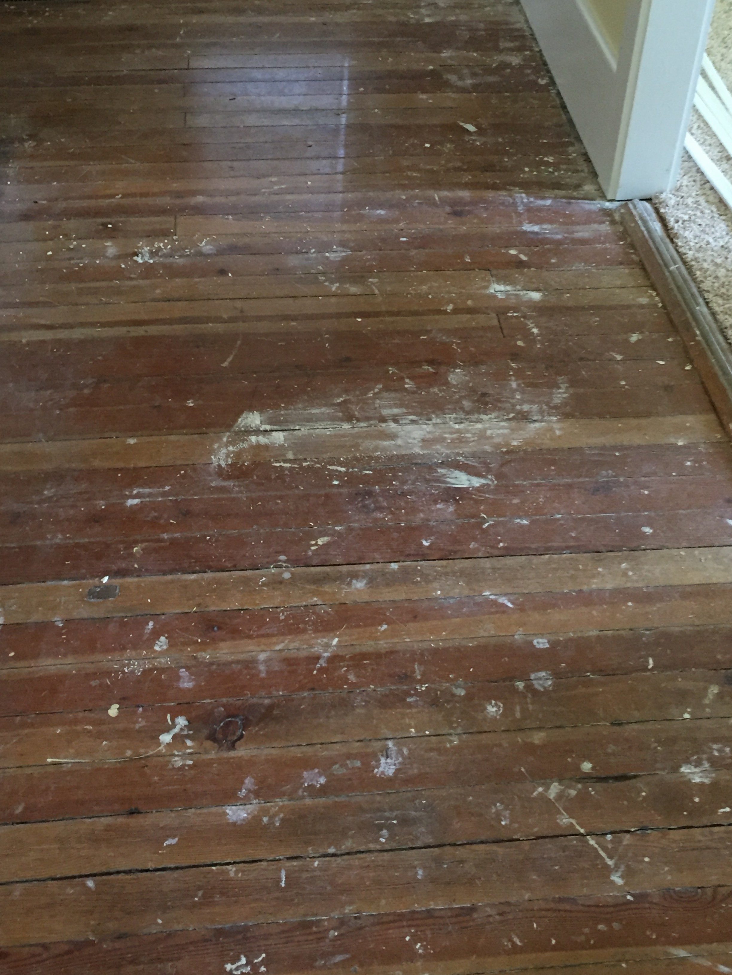 asheville hardwood floor cleaning