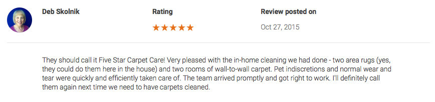 asheville carpet cleaning reviews