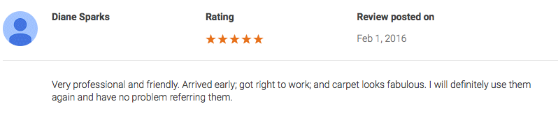 carpet cleaner customer review